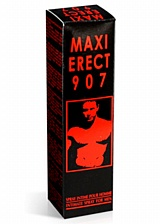 Spray Maxi Erect 907
